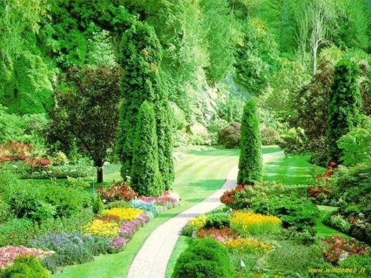 giardino 131814921_6510562_118449327